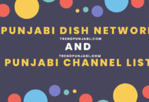 Punjabi dish network and Channel List