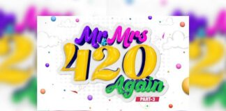 Mr and Mrs 420 Again Movie